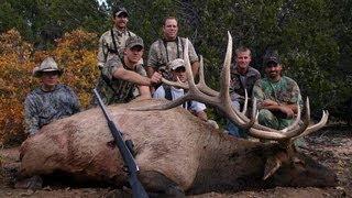 Muzzleloader Elk Hunt Pahvant Utah - MossBack