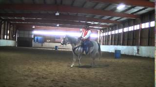 Horse Training- Spring tune Up