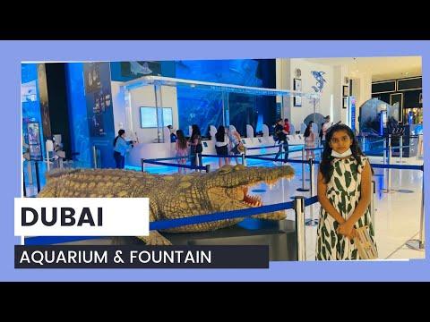 Dubai Aquarium   Dubai Fountain  dubai fountain show dubai mall