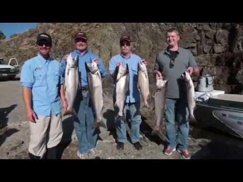 Columbia River Super Bait Salmon