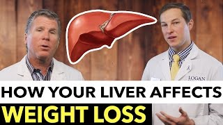 How Your Liver Affects Weight Loss