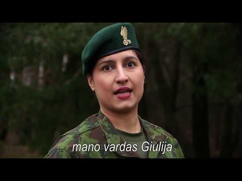 Armed Forces Day in Lithuania - November 23, 2017