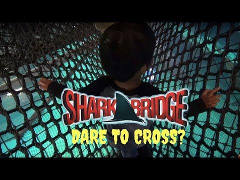 Adventure Aquarium Shark Bridge