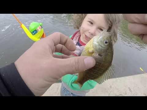 2019 Skokie Lagoons Main Dam Fishing Bass Carp Bluegill Family Kid Fishing