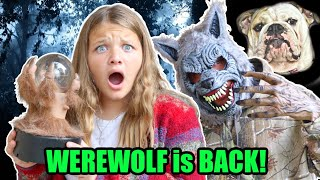 WEREWOLF in OUR HOUSE! OUR DOG IS MISSING!