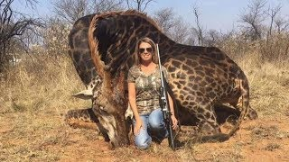 Big game hunter who killed giraffe faces social media backlash