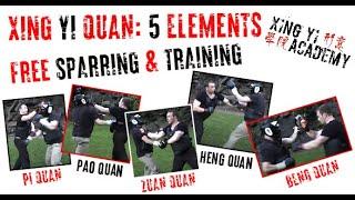 Xing Yi Quan: Basic Five Elements Free Fighting (+Training Session)