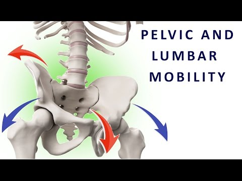 Moving your pelvis - how to mobilize the lumbar spine and coordinate abdominal and lumbar muscles