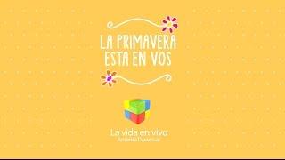 EN VIVO - América TV HD