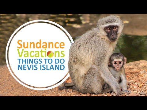 Sundance Vacations- Things to Do in Nevis Island, Caribbean