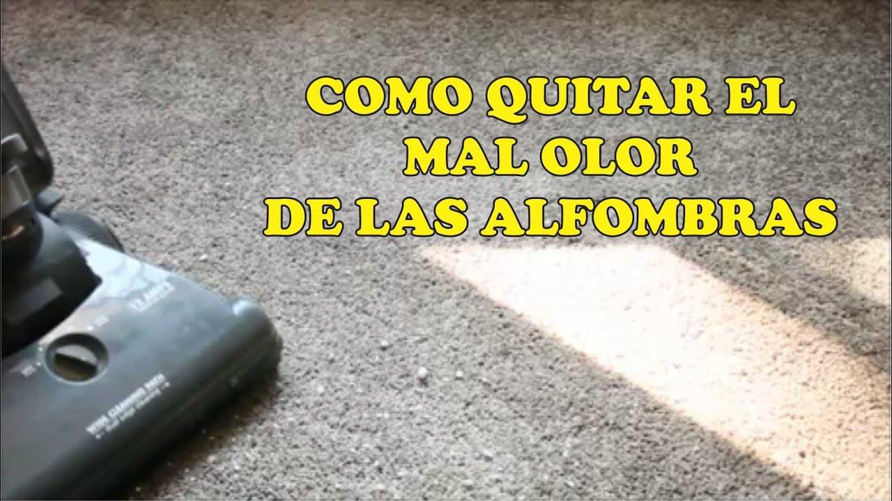 Como quitar malos olores de las alfombras youtube - Malos olores en casa ...