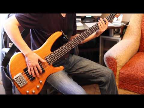 Korn - Narcissistic Cannibal (bass cover)