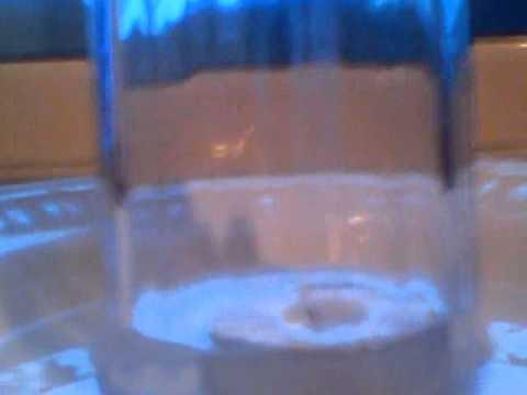 κολπο με το νερο (1)