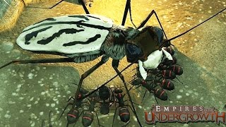 MASSIVE BUG ATTACK!  Sim Ant Game (Empires of the Undergrowth Gameplay)