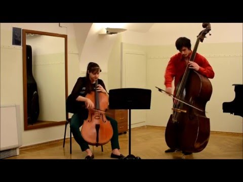 Mozart sonata for fagot and cello (Cello and double bass)