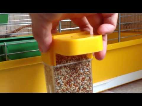 3/4 Обзор клетки и гнезда для разведения попугаев корелл. Что важно. Советы бывалого заводчика