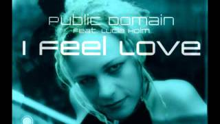 Public Domain feat Lucia Holm - I Feel Love (Stevie B Remix)