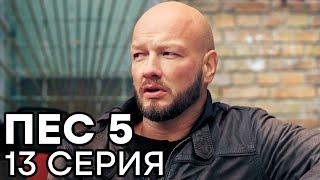 Сериал ПЕС - 5 сезон - 13 серия - ВСЕ СЕРИИ смотреть онлайн | СЕРИАЛЫ ICTV