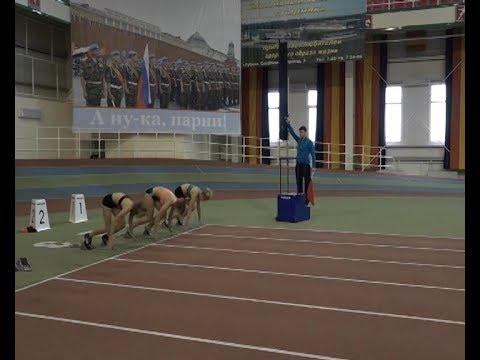 «Сердца, отданные спорту» — турнир памяти тренеров по легкой атлетике