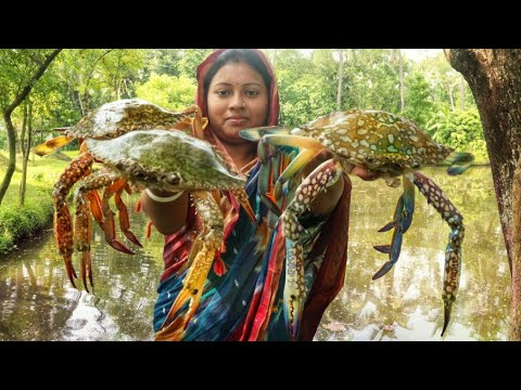 KING CRAB !!! Amazing Cutting&Cooking Delicious Masala Crab Fry Recipe || Crab Cleaning Video Bangla