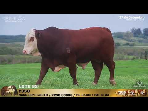 LOTE 052