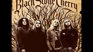 (MY) TOP 10 (BEST OF) BLACK STONE CHERRY