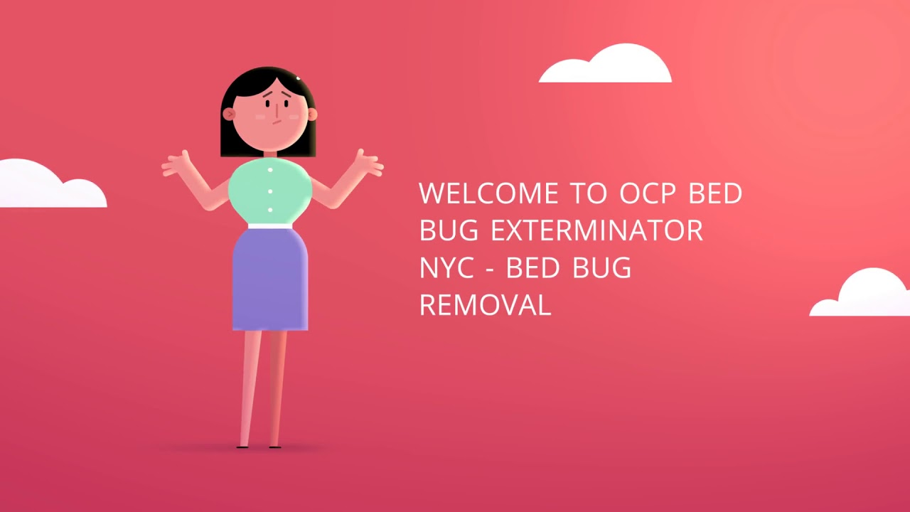 OCP Bed Bug Removal in NYC | 646-760-6617