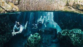 Mayan Ruins, Hidden Cenotes, and Flamingos in Mexi...