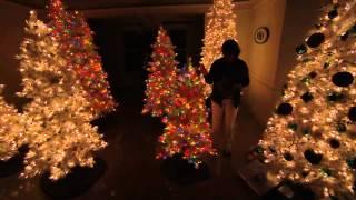 Bethlehem Lights 9