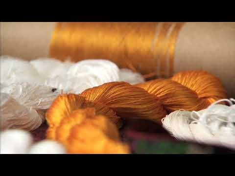AMNH - Silk Road - Making Silk