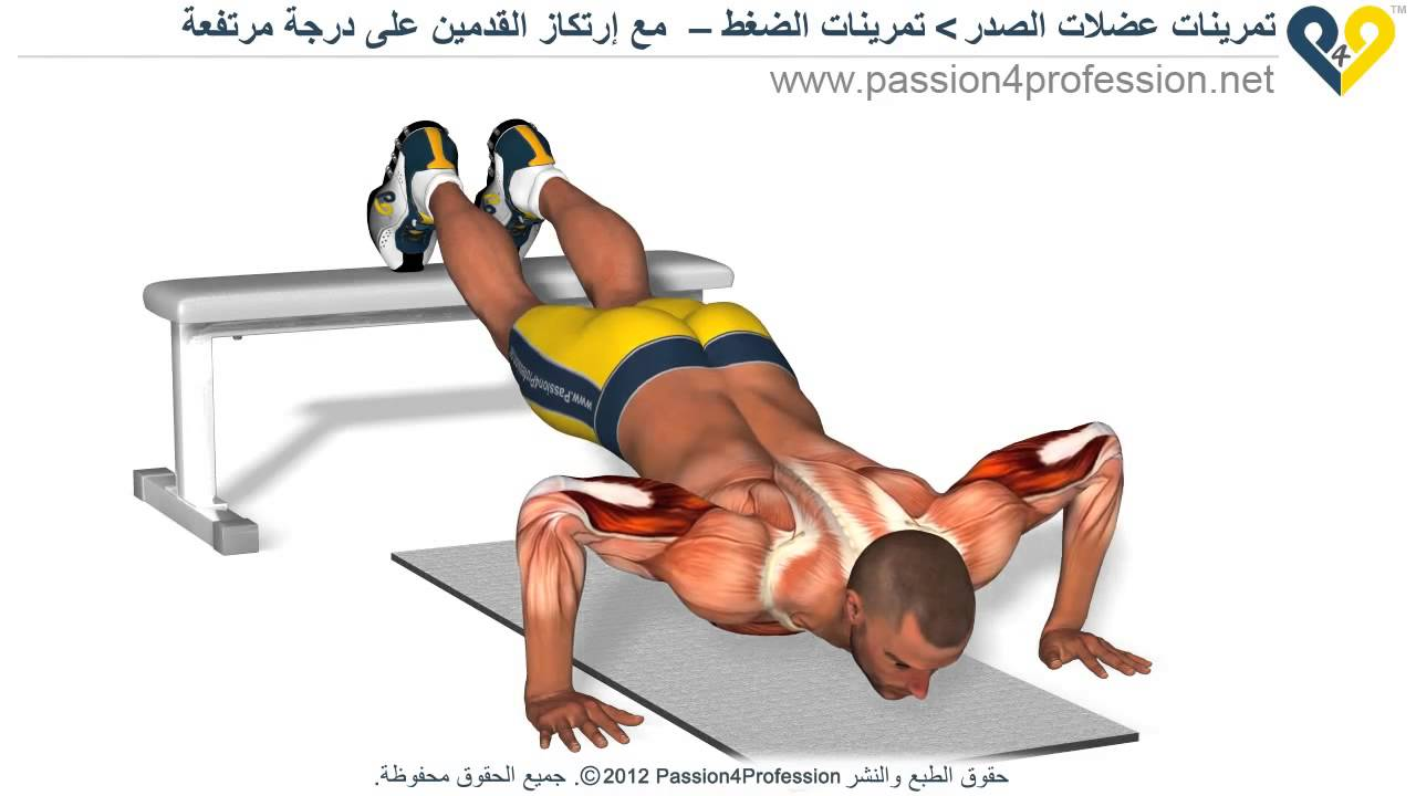 Are Pushups Effective For Building Muscle