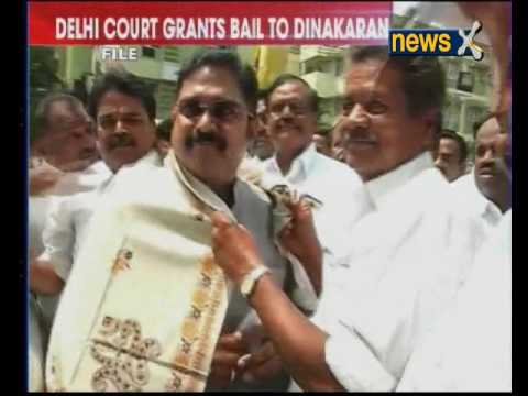 AIADMK election symbol row: Delhi court grants bail to TTV Dinakaran, aide