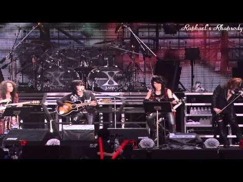 X JAPAN (X) - Forever Love LIVE 2010 (Korean, Japanese Sub)