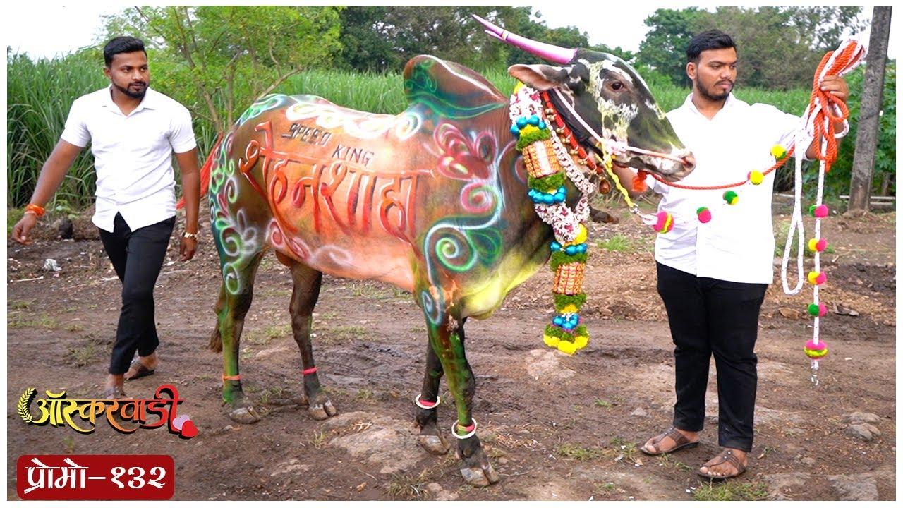 Download ऑस्करवाडी  प्रोमो #132  Oscarwadi  Promo #132  Marathi Web Series