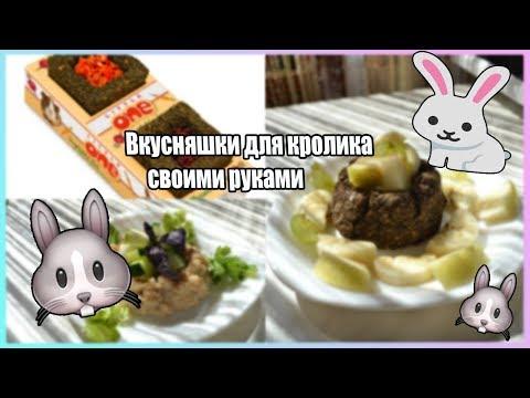Вкусняшки для кролика своими руками/Как в зоомагазине?
