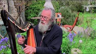Jour 81 - Rencontre avec Myrdhin, druide
