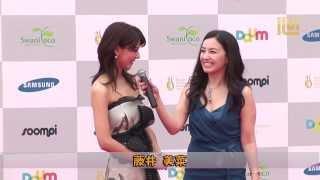 『ソウルドラマアワード2013』レッドカーペット-「藤井美菜」 Seoul In...