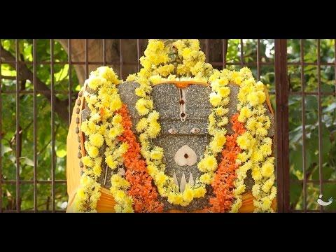 Rayara Brindavana at Bichale