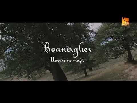 Boanerghes - Uneori in viata