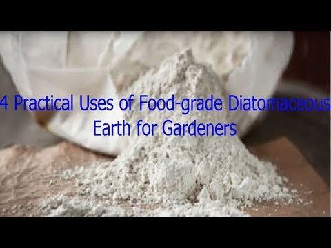 4 Practical Uses of Food grade Diatomaceous Earth for Gardeners