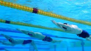 Чемпионат Европы по плаванию на короткой воде завершился триумфом сборной России