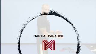 Martial Paradise shoulder exercise Short-Range Bands