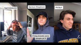 If dog breeds were human #FunnyTiktok