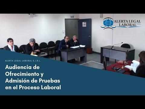 Audiencia contrato realidad Juzgado 12 Laboral Bogotaиз YouTube · Длительность: 26 мин47 с