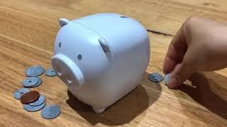 ふしぎなブタの貯金箱