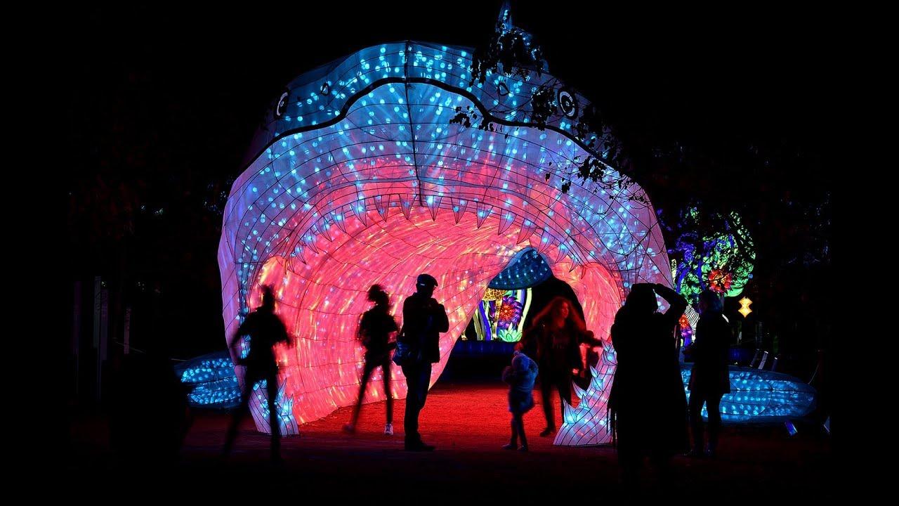 Espèces en voie d\'illumination | Jardin des Plantes