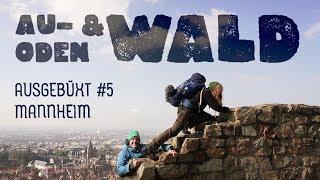 Au- & Odenwald - Wintercamping ohne Tarp: AUSGEBÜXT #5 MANNHEIM - Wandern, Trekking, Deutschland