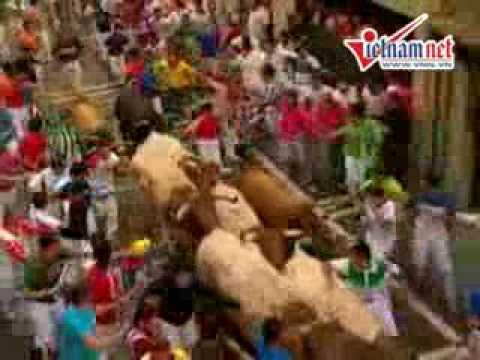 Liều mạng chạy đua với bò tót-  Vietnamnet video