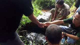 Viral air asin berada dperkampungan kalbar kayan hulu