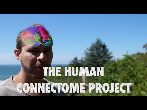 Human Connectome Project- Scientists identify your brain with 99% accuracy and predict your skills